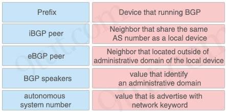 BGP_components.jpg
