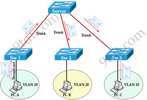 CCNA Training » VLAN Trunking Protocol VTP Tutorial