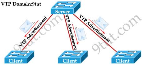 VTP_modes.jpg